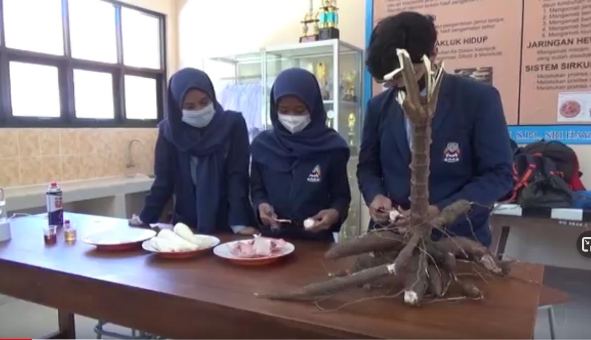 Trio Pelajar Ponorogo Sulap Kulit Singkong Jadi Gula