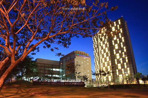 10 Ragam Beasiswa di Universitas Ciputra Surabaya, Nggak Perlu Cerdas Banget!