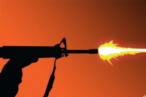 Baku Tembak di Ilaga, 2 Anggota KKB Tewas