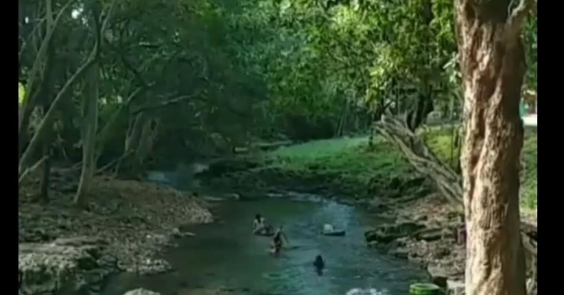 Menikmati Indahnya Underwater di Tengah Hutan Bojonegoro