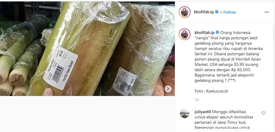 Wow, Orang Indonesia Menangis Melihat Ini, Batang Pisang di Amerika Dijual Rp85 Ribu