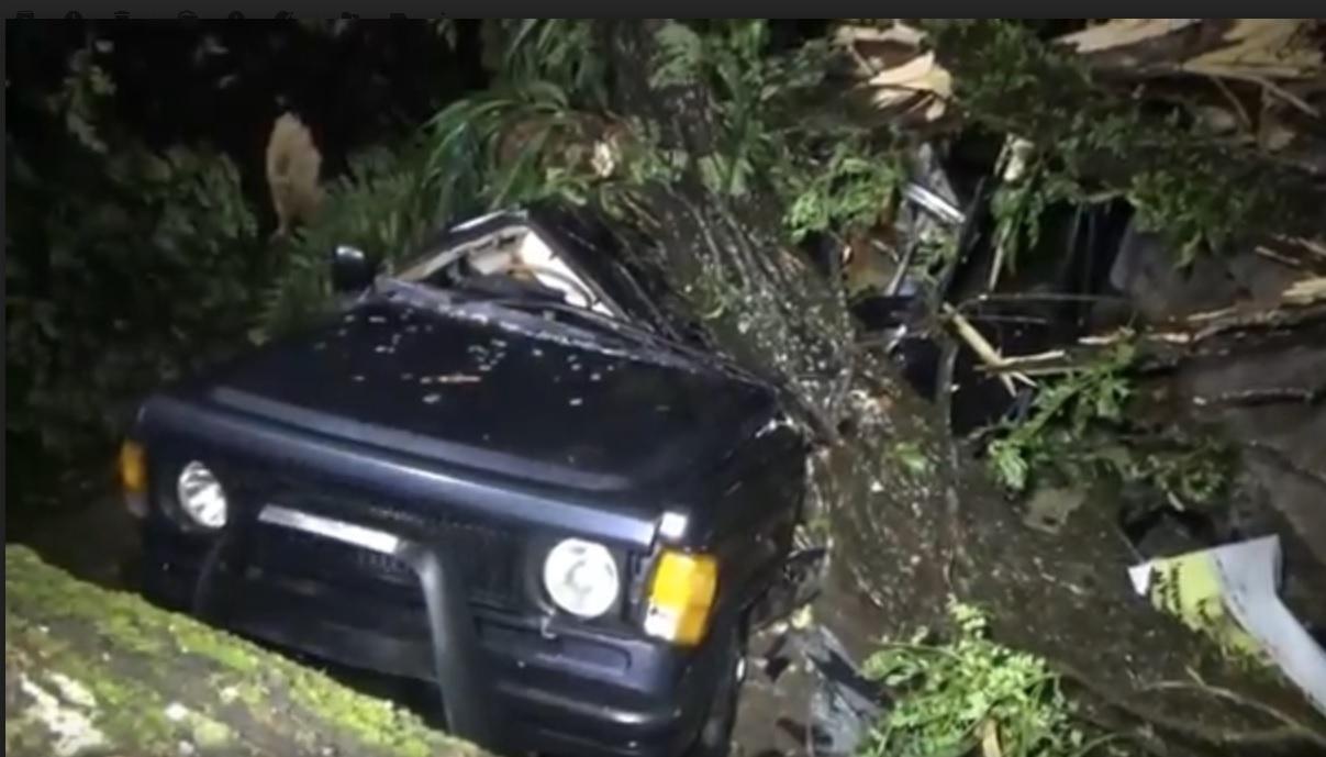 Puting Beliung Terjang Ngawi,  6 Rumah dan 1 Mobil Rusak Tertimpa Pohon Tumbang